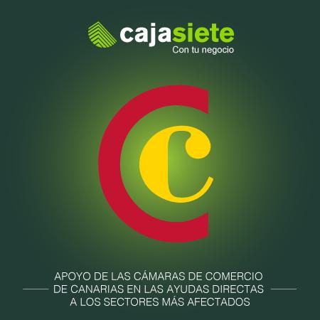 Apoyo de las Cámaras de Comercio de Canarias en las ayudas directas a los sectores más afectados