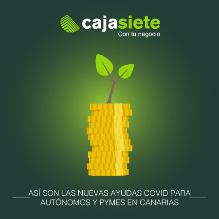 Así son las nuevas ayudas COVID para autónomos y pymes en Canarias