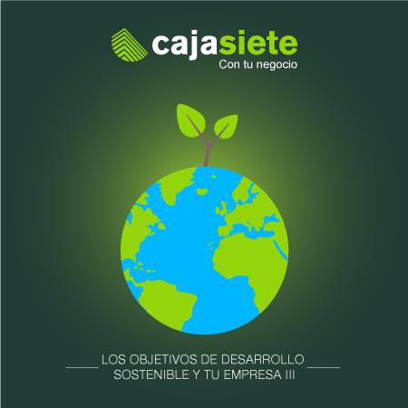 Los Objetivos de Desarrollo Sostenible y tu empresa III