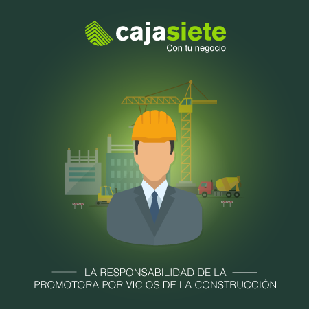 La responsabilidad de la promotora por vicios de la construcción (I)