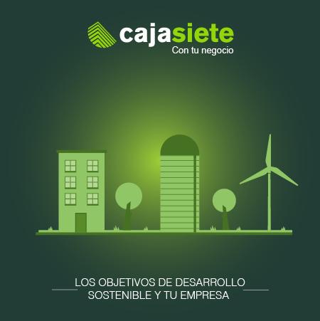 Los Objetivos de Desarrollo Sostenible y tu empresa