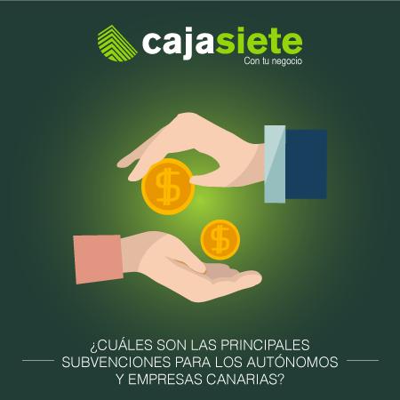 ¿Cuáles son las principales subvenciones para los autónomos y empresas canarias?